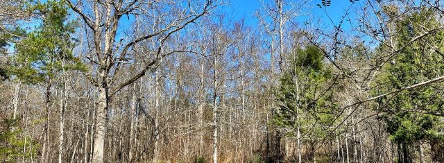 South Monroe County Estate tract SOLD